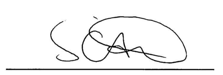Director signature
